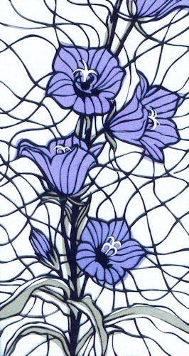 Tuinbloemen
