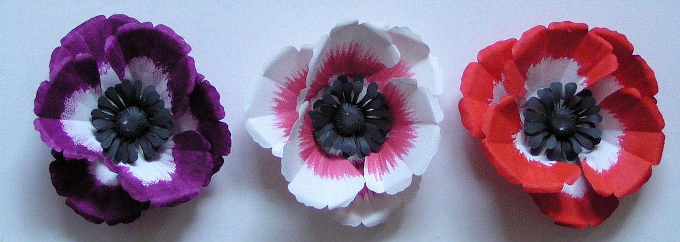 Anemonen paneel kleur