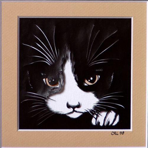 Kattenluik Abrikoos